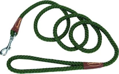 Picture of Remington R0206-GRN06 Braided Rope Snap Dog Leash, 6', Green