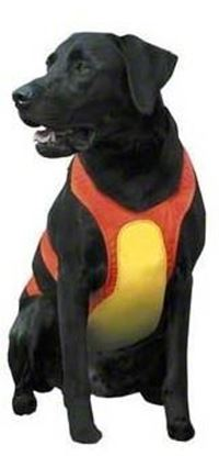 Picture of Remington R1900-ORGLRG Dog Chest Protector, Large, Orange