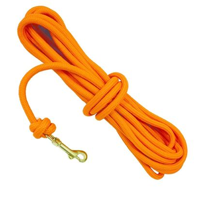 """Picture of DT Systems 50400 Dog Training Check Cord 3/8"""" Blaze Orange 30 Ft"""