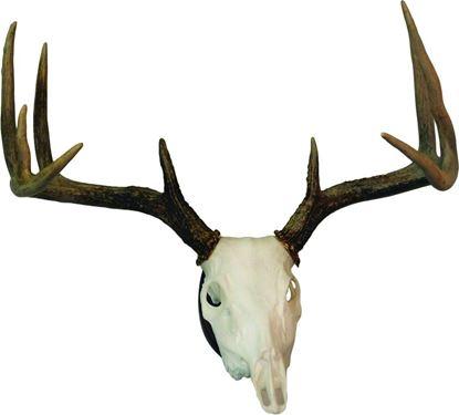 Picture of Hunters Specialties 01638 European Skull Deer Mounting Kit
