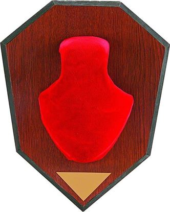 Picture of Allen 561 Antler Mounting Kit, Wood Grain Plaque, Red Skull Cover