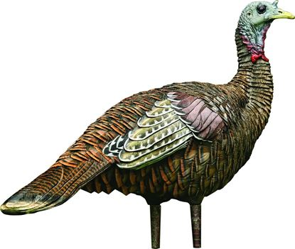 Picture of Avian-X AVX8006 8006 LCD Lookout Hen Turkey Decoy, Full Body, Inflatable