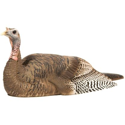 Picture of Dave Smith Decoy Mating Hen
