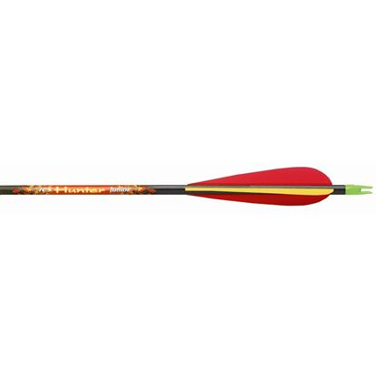 Picture of Beman ICS Hunter Junior Arrows