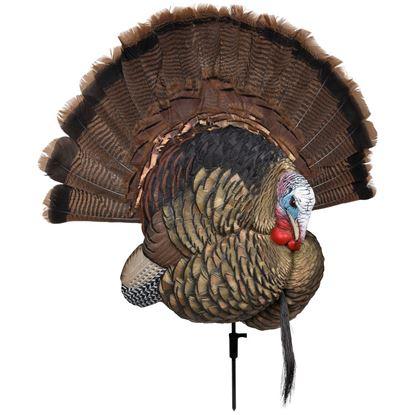 Picture of Avian X Turkey Decoy