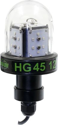 Picture of Hydro Glow HG45 45w, 12v Deep Water LED Fishing Light, Globe style, Green, 20' cord, 5400 lumen